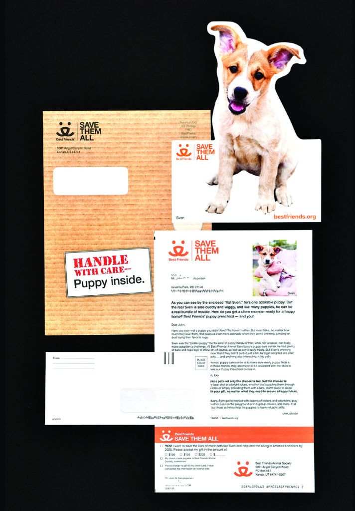Puppy in the Mail